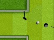 Mini Golf in gradina cu 2 jucatori
