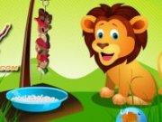 Frigaruri pentru lei
