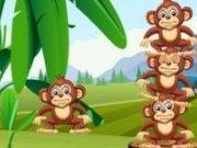 Echilibru cu maimute