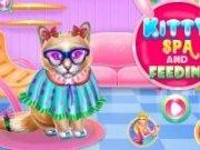 Pisicuta Kitty la Spa
