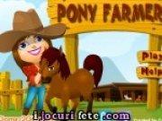 Ingrijeste poneii de la ferma