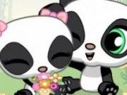 Pui dragalasi de ursuleti Panda