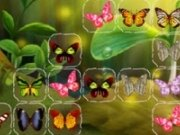 connect imagini cu fluturi