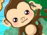 Spala si ingrijeste maimuta