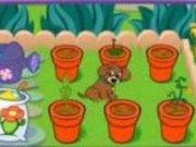 Gradina cu flori a lui Dora