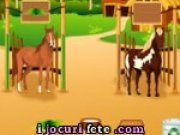 Joc de ingrijit cai