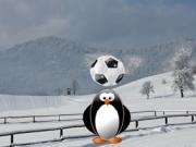 Fotbal cu pinguini