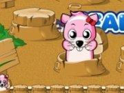 Hamster Joc de memorie