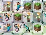 Potriviri MineCraft