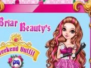 Briar Beauty Party