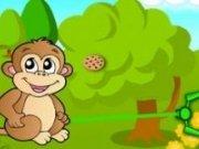 Hraneste maimute