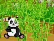 Panda Bambus